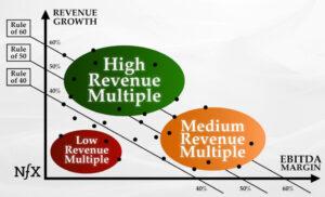 Revenue-Multiple-business valuations